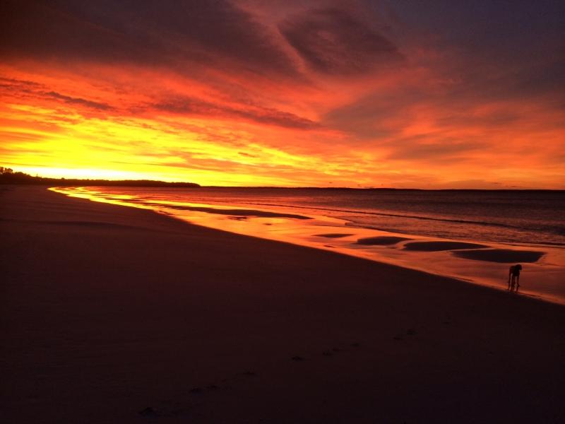 Sunrise Callala Beach (Rowena Sierant)